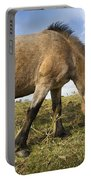 Dartmoor Pony Portable Battery Charger