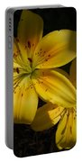 Day Lily  Portable Battery Charger