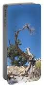 Dead Tree At Grand Canyon Portable Battery Charger