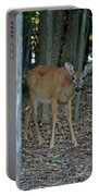 Deer 1 Portable Battery Charger