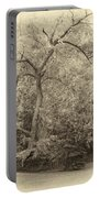 Determination Sepia Portable Battery Charger