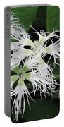 Dianthus Superbus - White Portable Battery Charger