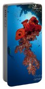 Diver Looks On At A Bright Red Soft Portable Battery Charger