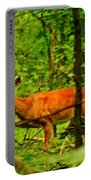 Doe On The Move Portable Battery Charger