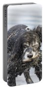 Dog Shake Portable Battery Charger