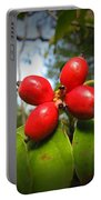 Dogwood Berries Portable Battery Charger
