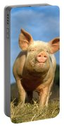 Domestic Pig Portable Battery Charger