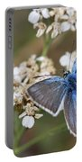 Eastern Baton Blue  Portable Battery Charger