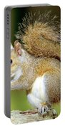 Eastern Gray Squirrel Portable Battery Charger