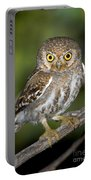 Elf Owl Portable Battery Charger