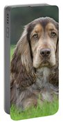 English Cocker Spaniel Dog Portable Battery Charger