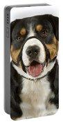 Entlebuch Mountain Dog Portable Battery Charger