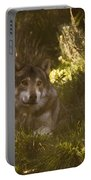 European Wolf Portable Battery Charger