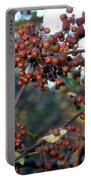 Fall Fruit Portable Battery Charger