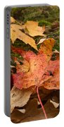 Fall Moss Carpet Portable Battery Charger
