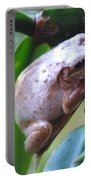 Fat Treefrog Portable Battery Charger
