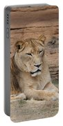 Female African Lion Portable Battery Charger