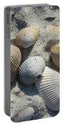 Fernandina Shells  Portable Battery Charger