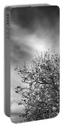 Flowering Almond Portable Battery Charger