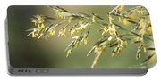 Flowering Brome Grass Portable Battery Charger