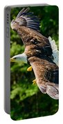 Flying Eagle Portable Battery Charger
