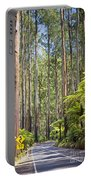 Forest Road Portable Battery Charger
