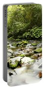 Forest Stream Portable Battery Charger by Les Cunliffe