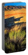 Fossil Beds And Grass Portable Battery Charger