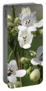 Fox Glove Breadtonge Portable Battery Charger