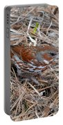 Fox Sparrow 2 Portable Battery Charger