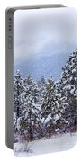 Fresh Snow Portable Battery Charger