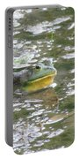 Frog Portable Battery Charger