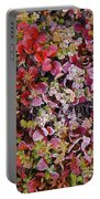 Frost On Autumn Tundra Portable Battery Charger