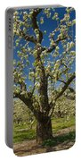Fruit Orchard Portable Battery Charger