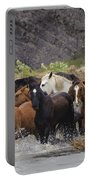 Gaucho With Herd Of Horses Portable Battery Charger