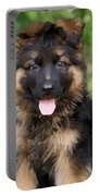 German Shepherd Puppy Portable Battery Charger by Sandy Keeton