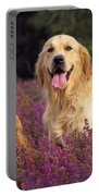 Golden Retriever Dogs In Heather Portable Battery Charger