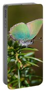 Green Hairstreak Portable Battery Charger
