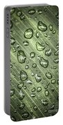 Green Leaf With Raindrops Portable Battery Charger