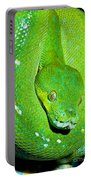 Green Tree Python Portable Battery Charger