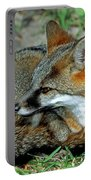 Grey Fox Portable Battery Charger