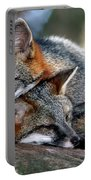 Grey Foxes Portable Battery Charger