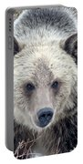 Griz Portable Battery Charger