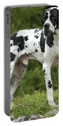 Harlequin Great Dane Portable Battery Charger