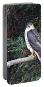 Hawk On Branch Portable Battery Charger