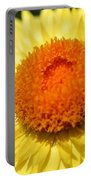 Helichrysum Bracteatum Named Strawburst Yellow Portable Battery Charger