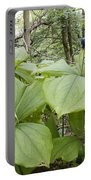 Herb Paris Portable Battery Charger