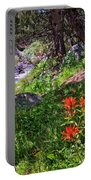 High Country Wildflowers 2 Portable Battery Charger