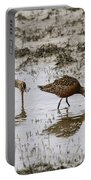Hudsonian Godwit Portable Battery Charger