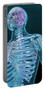 Human Skeleton And Brain, Artwork Portable Battery Charger